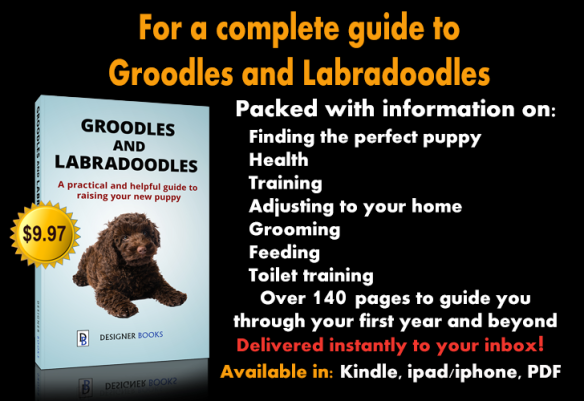 Groodle and Labradoodle Book
