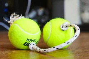 diy-dog-toys tennis ball